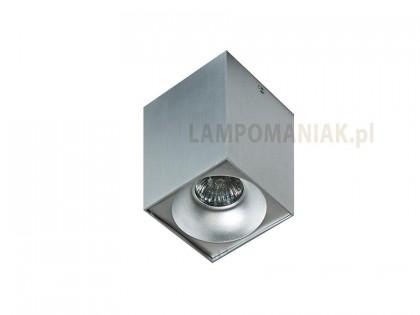 Lampa techniczna Hugo 1 Aluminium